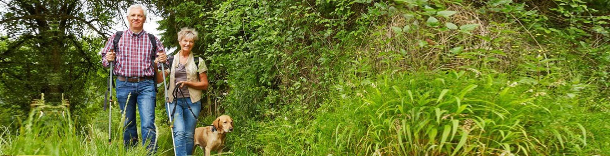 Zeckstick- Zeckenentfgerner für Tierliebhaber